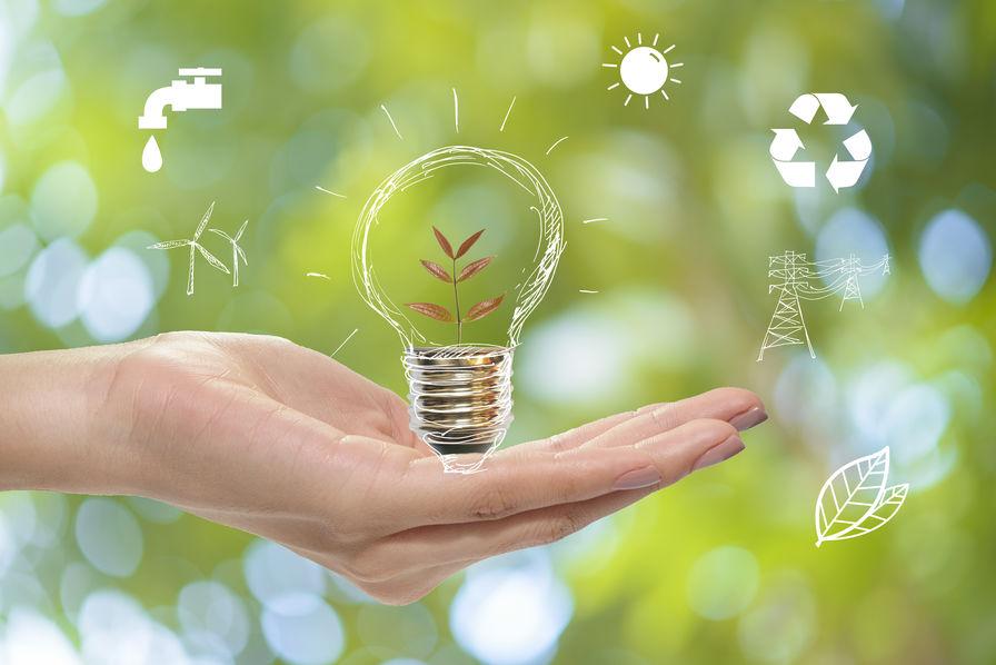 environnement-etudes-donnees-chiffres-enquetes-story-mind